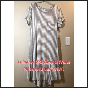 Lularoe Carly 2X Gray Striped Comfort Dress NWT$55